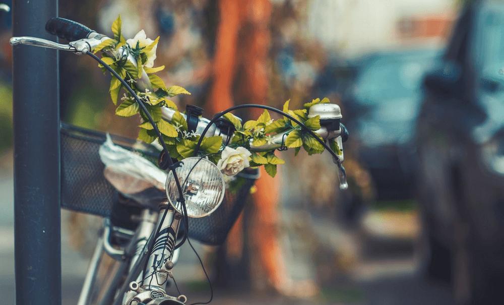 Experiências para a vida – Casar ou comprar uma bicicleta?
